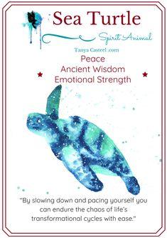 Turtle Spirit Animal, Spirit Animal Totem, Animal Spirit Guides, Animal Totems, Animal Meanings, Animal Symbolism, Symbols And Meanings, Turtle Symbolism, Turtle Quotes