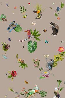Wallpaper Edward van Vliet for No Limits