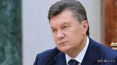 Что нашли в резиденции Виктора Януковича - Новости Севастополя - Севастопольская биржа услуг