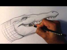 Een foto van de kop van een krokodil. Deze ga ik gebruiken voor realistisch tekenen van een kop van een krokodil