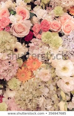 Find Wall Flowers Retro Texture Vintage Effect stock images in HD and millions of other royalty-free stock photos, illustrations and vectors in the Shutterstock collection. Thousands of new, high-quality pictures added every day. Wall Flowers, Flower Wall, Filter, Photo Editing, Floral Wreath, Royalty Free Stock Photos, Texture, Retro, Illustration