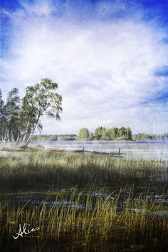 Old Times, Landspace photo from Rautavaara, Finland. Landscape Photos, Landscape Photography, Nature Photography, Land Scape, Alter, Trek, Fine Art Prints, Clouds, Painting
