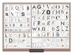 Orecchio, occhio, collo, spalla, gamba, piede, corpo… No, non si parla di anatomia. O meglio sì ma l'anatomia in questione è quella dei caratteri tipografici che—pure tra grazie, cravatte, pesi, crenature, apici, vertici, grassetti, spaziature, legature, lettere corsive, lettere formali, lettere calligrafiche—hanno un vocabolario ricchissimo e spesso sconosciuto ai non addetti ai lavori. Per rimediare, …