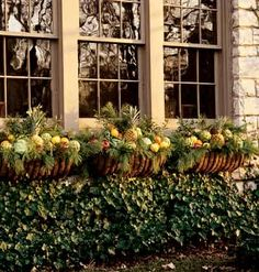 Christmas window boxes with pineapples!