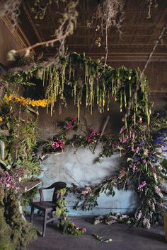Art in decay: these plants are growing and arranged inside an abandoned Detroit home. Look at the beautiful ceiling.