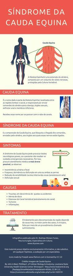 A Síndrome da Cauda Equina é rara, mas grave. O reconhecimento dos sintomas e busca de atendimento de emergência podem reduzir os danos neurológicos permanentes ao paciente. Conheça!