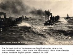 """Image detail for -1960 Last wood-built drifter/trawler steam drifter """"Wydale YH105 ..."""
