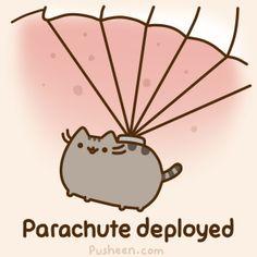Pusheen's Parachute Deployed!
