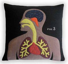 anatomically correct cushion.