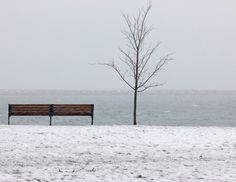 Bench, winter, snow storm, Winter Harbor, wall decor, photography by DonnaRobergePhoto on Etsy https://www.etsy.com/listing/124509052/bench-winter-snow-storm-winter-harbor