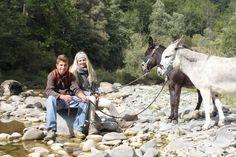 Kreativschnecke Eseltrekking-Wangen - Begegnung mit einem Esel