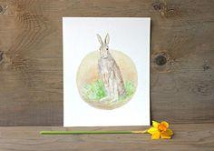 Rabbit Watercolor Print by Kathleen Maunder (Trowel & Paintbrush)
