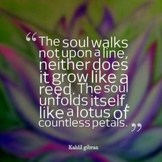 You're a petaled petunia.   #SHHP @SHHProject #StitchedHeadandHeartProject www.haleyhallock.com #dailytruth