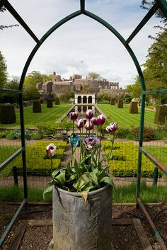 The Queen Mother's Garden, Walmer Castle, Kent, UK built in 1539 by King Henry VIII, by WaFp, via Flickr