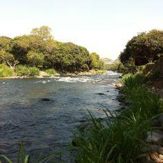 Vista de Careva hacia el #RioActopan  #naturaleza Rio Actopan
