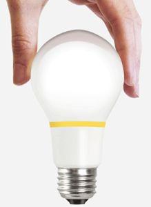 Finally Energy Efficient Lightbulbs – a Bright Idea!