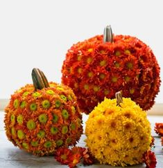 DIY Fall Decor Ideas. Wonder if I could do this with wire pumpkins and artificial mums.
