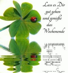 - Merle Heimerl - Diy - New Ideas Happy Weekend, Happy Friday, Christian Dating Advice, Goeie More, Garden Quotes, Dance Quotes, School Snacks, Say Hello, Famous Quotes