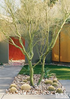 Modern Garden in Palm Springs, California