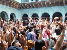 Report from the celebrations of the 40th anniversary of Sri Krishna Balarama Mandir