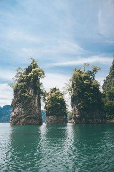 Khao Sok National Park | Thailand travel | Thailand photography | Best places in Thailand bucket lists | Best places in Thailand | | Thailand Instagram pictures | Thailand Instagram ideas | Thailand travel tips | Thailand travel photography | Thailand travel destinations | Thailand travel backpacking | Things to do Thailand top 10