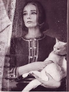 A white Cat (with Audrey Hepburn in background) photographed by Richard Avedon, Harper's Bazaar, September 1959