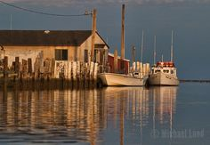 Michael Land Photography specializes in images of workboats, birds, lighthouses and more of the Chesapeake Bay. Delmarva Peninsula, Lobster Fishing, Chesapeake Bay, Fishing Boats, Maryland, Lighthouse, Holland, Commercial, Landscape