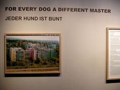 Katerina Seda 'Jeder Hund ist Bunt' - Documenta 12, Kassel, Germany: 2007