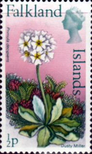 Falkland Islands 1972 Decimal Flowers Fine Mint SG 293 Scott 210a Other South Pacific and British Commonwealth Stamps HERE!