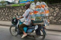 Gold-fish being transported!