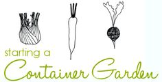 tutorial for creating your own container vegetable garden