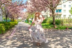 Die besten Kirschblüten Foto Locations in Wien - Kirschblütenblog Cherry Blossom, Good Photos, Great Pictures, Amazing Eyes, Cherries, Nice Asses, Cherry Blossoms