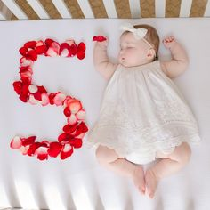 Such a sweet idea : use rose petals as a five month baby milestone photo prop 3 Month Old Baby Pictures, Fall Baby Pictures, Monthly Baby Photos, Baby Girl Photos, Newborn Baby Photography, Bbg, Baby Milestones, Cute Little Baby, Cute Baby Clothes
