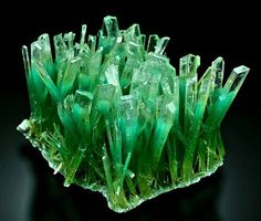 Emerald green Gypsum var selenite crystals cluster on matrix with Atacamite from new find in Lubin Copper mine. Lower Silesia, Poland http://amzn.to/2tpDPX4