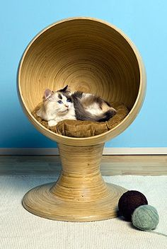 Bamboo Kitty Ball Bed. Maybe I could make Chloe one like this.... DIY project?