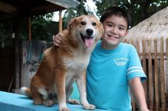 Ken started his own animal rescue shelter, the Happy Animals Club, when he was eight. Faith In Humanity Restored, Dog Rules, Happy Animals, Old Boys, Dog Training Tips, Animal Rescue Shelters, I Love Dogs, Animals Beautiful, Little Boys