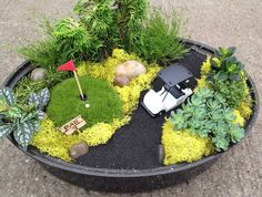 Try out some cool new themes for your miniature gardens.