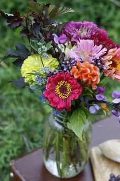Such a natural simplistic bouquet of common seeds. Love the colors and textures. Table Flowers, Cut Flowers, Fresh Flowers, Beautiful Flowers, Wild Flowers, Flowers Nature, Tropical Flowers, Zinnia Garden, Cut Flower Garden