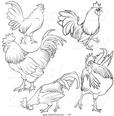 clip-art-vector-of-a-digital-set-of-rooster-outlines-by-dero-137.jpg (1024×1044)