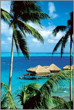✯ Another little place I enjoyed years ago.  Huahine Island - French Polynesia
