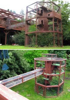 The Ultimate Cat Tree - Catio! I wish I could build a cat run half this size for my furries. Diy Cat Enclosure, Outdoor Cat Enclosure, Pet Enclosures, Rabbit Enclosure, Cat Towers, Outdoor Cats, Cat House Outdoor, Outdoor Trees, Outside Cat House