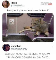 Pourquoi il y a un loup dans le bus ? - Be-troll - vidéos humour, actualité insolite