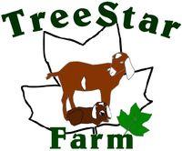 Treestar Farm is dairy goat farm located in Wake Forest, North Carolina owned by Elisabeth Montague. Goat Barn, Raising Goats, Wake Forest, Goat Farming, North Carolina, Dairy
