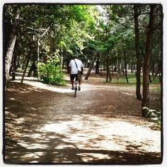 #ricordi d'#estate #bicicletta in #pineta #spiaggia #mare #bike #sea #beach #ravenna #pinarella #cervia #riviera #romagna #igersfc #ig_ravenna #ig_forli_cesena #ig_emilia_romagna #ig_emiliaromagna #vivoitalia #vivoemiliaromagna #vivocesena #vivorimini #volgoitalia #volgoemiliaromagna