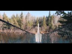 A breathtaking stop. Rising 4 meters above the water, the bridge spans the Pinawa Channel connecting with hiking and skiing trails. Suspension Bridge, Places Ive Been, Skiing, Natural Beauty, Opportunity, Trail, Alice, Canada, Water
