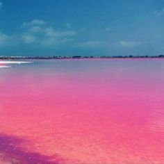 #lake #rebta #lakeretba #pink #senegal #rose