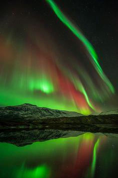 Northern Lights in Høgtuva, Norway