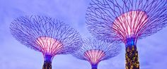 Singapore Gardens by the Bay featured in EYES IN Magazine, Issue 19
