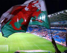 Cymru Am Byth! #wales #cymru Wales Rugby, Welsh Dragon, My Father, Fathers, How Lucky Am I, Cymru, World Of Sports, Swansea, Red Dragon