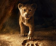 Simba the lion cub walking out of a cave Lion King Video, The Lion King, Donald Glover, Geek Movies, Movies To Watch, Frases Hakuna Matata, Live Action, Tanzania, Disney Shares